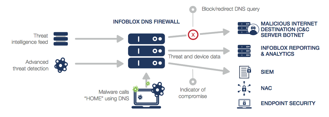 What is malware and how can malware be prevented and controlled.